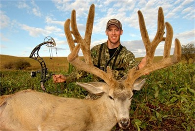 SHANE'S B&C TYPICAL MULIE
