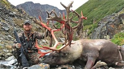 MOUNTAIN CARIBOU WITH CEASER LAKE OUTFITTERS